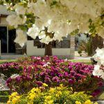 l_egypt_hotel_coral_beach_14.jpg