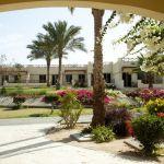 l_egypt_hotel_coral_beach_16.jpg